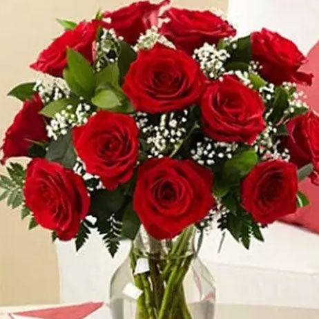 Beautiful Roses Online in Canada