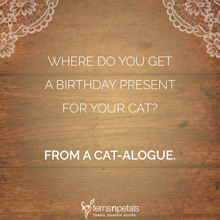 birthday pun for download