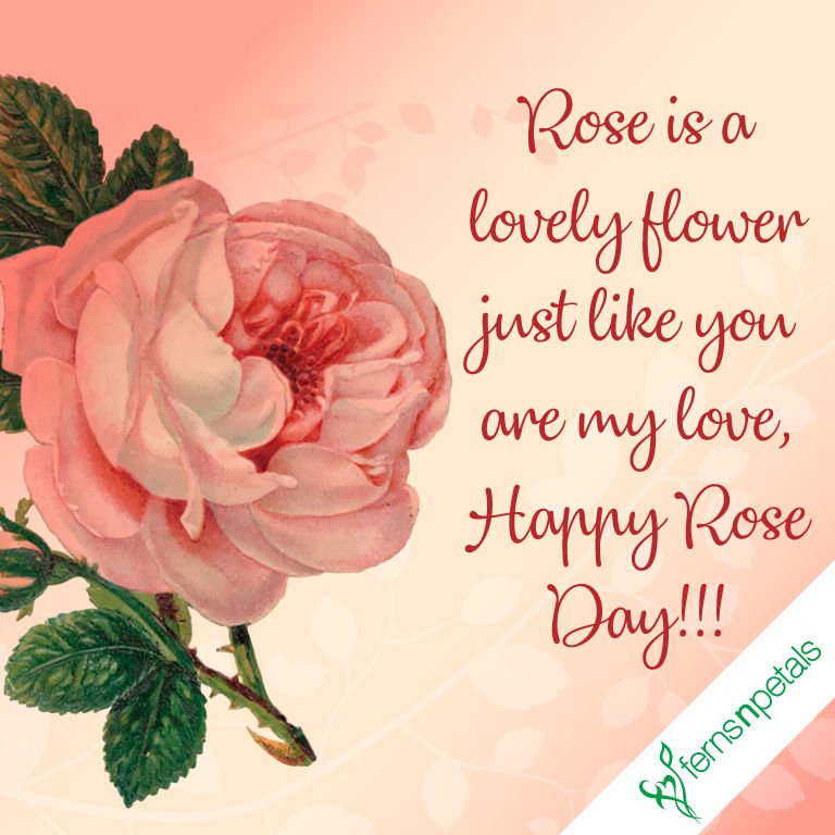 creative rose day quotes