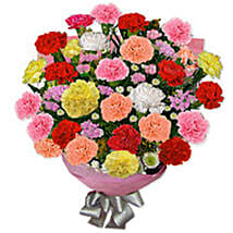 Carnation Carnival ARG: Send Gifts to Argentina