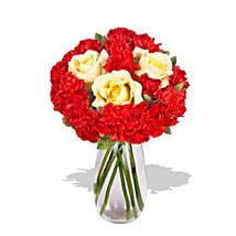 Carnation Delight: Order Flowers Adelaide