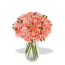 Pink Carnation: I Am Sorry Flowers to Australia