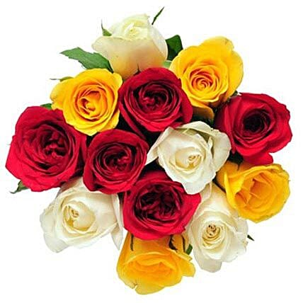 12 Mix Color Roses
