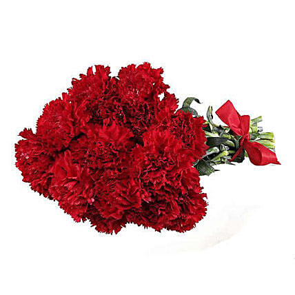 12 Red Carnations
