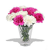 10 Pink n White Carnations in Vase: Birthday Gift Delivery in Toronto