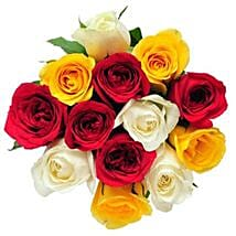 12 Mix Color Roses: Thank You Flowers Canada