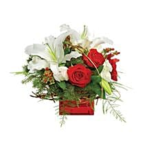Christmas Dreams: Send Christmas Flowers to Canada
