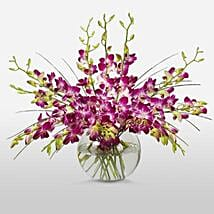 Purple Orchids in Vase: Thank You Flowers Canada