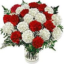Carnation Fascination Colo: Rakhi Delivery in Colombia