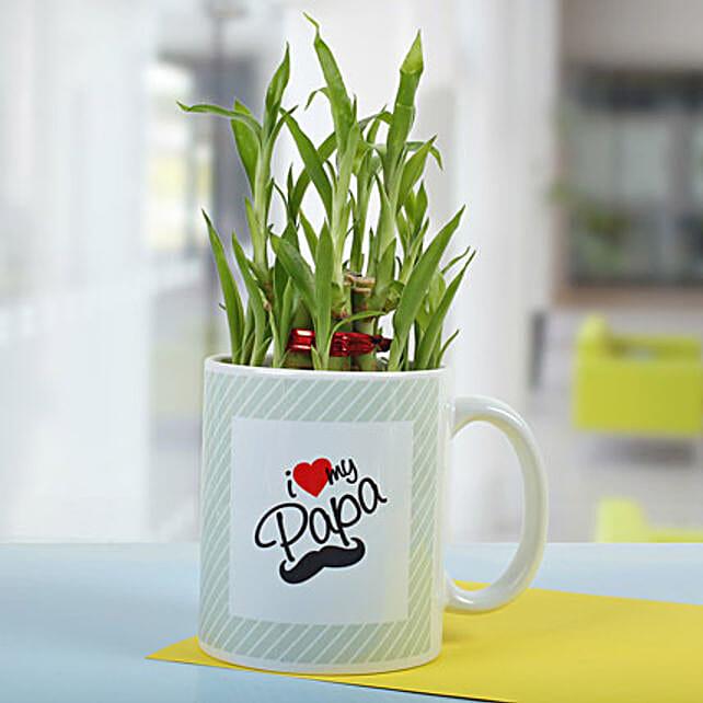 Bamboo In A Mug