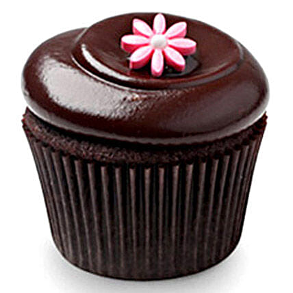 Chocolate Squared Cupcakes 24 Eggless