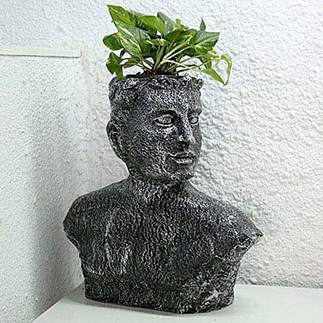 Money Plant in Designer Pot