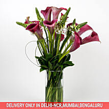 12 Exotic Peregrine Purple Calla Lilies 9 White Ornithogalum in Glass Vase: Lilies