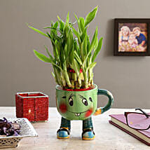 2 Layer Lucky Bamboo In Smiley Mug Green: Send Indoor Plants