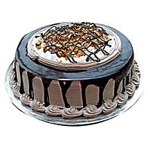 Chocolate Nova Cake: 25Th Anniversary Gifts