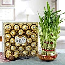 Ferrero Rocher with Three Layer Bamboo Plant: New Year Gift Hampers