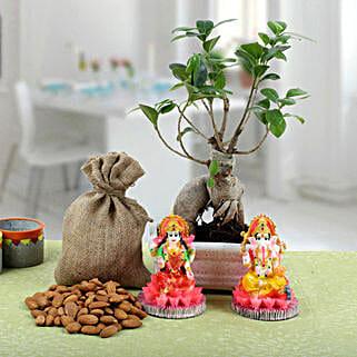 Ficus Bonsai Combo: Order Plants n Dry Fruits