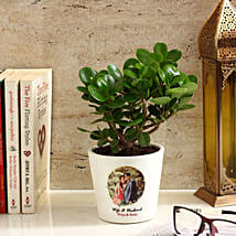 Ficus Dwarf Plant in White Personalised Ceramic Pot: Personalised gifts for birthday