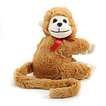 Huggable Monkey:
