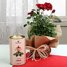 Love n Health Hand in Hand: Valentine Gifts to Vapi