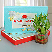 Lucky Wishes with Kaju Barfi: Fathers Day Sweets