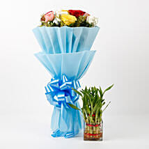 Mixed Roses & Two Layer Lucky Bamboo Combo: