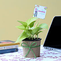 Money Plant For Daughter's Day: Plants - Same Day Delivery