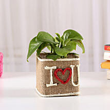 Money Plant In Jute Wrapped I Love You Vase: Gifts for Propose Day