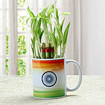 Oh So Beauty Combo: Good Luck Plants
