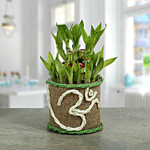 Om Two Layer Bamboo plant: Diwali Gifts for Him