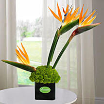 Orange Birds Arrangement: Send Flowers to Noida