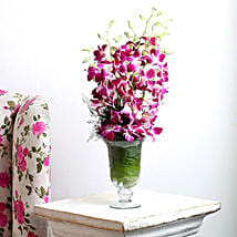 Orchid Aura: Romantic Flowers for Husband