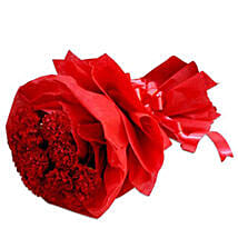 Perfect Red: Carnations