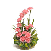 Pink Carnations Basket Arrangement: Mothers Day Gifts Jaipur
