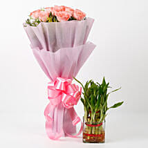 Pink Roses & Two Layer Bamboo Plant Combo: