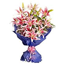 Pink Stargazer Lilies: Lilies to Gurgaon