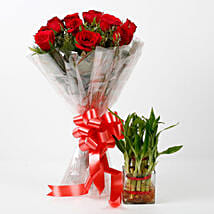 Red Roses & Two Layer Lucky Bamboo Combo: Plants for anniversary
