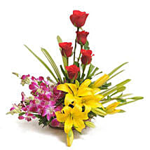 Sweet Splendor: Send Flowers to Mangalore