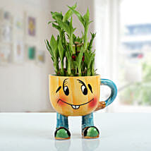 Two Layer Bamboo Plant With Smiley Vase: Bamboo Plants