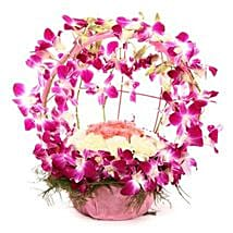 Vibrant Orchid Celebration: Wedding Flowers for Bride
