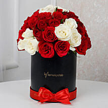White N Red Floral Beauty: All Flowers