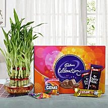 Yummy Chocolates N Three Layer Bamboo Plant: Easter Gifts