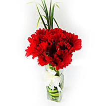 Sizzling Red Gerberas: Send Flower Bouquets to Malaysia