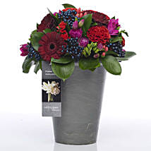 Bold N Beautiful Flowers: Romantic Gifts to New Zealand