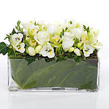 Classic Petals In Glass Vase: Romantic Gifts to Nz