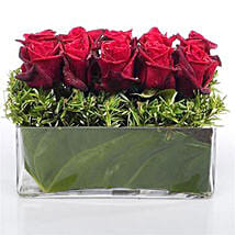 Heaven of Red Roses: Romantic Gifts to New Zealand
