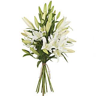 Pristine White Lilies: Lilies to New Zealand