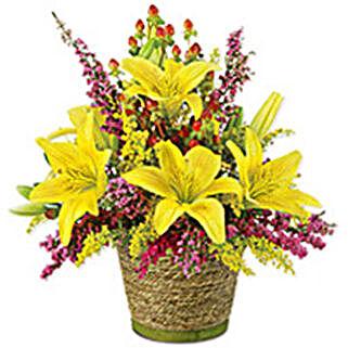Sunshine Delight qat: Get Well Soon Gifts to Qatar