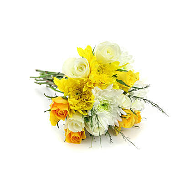 Blooms of Sunshine