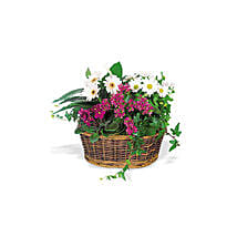 Send a Smile Flower Basket: Christmas Gifts Delivery In Saudi Arabia